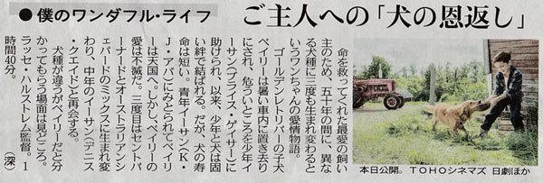 映画 僕のワンダフル・ライ.jpg