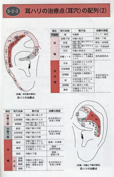 耳穴3.jpg